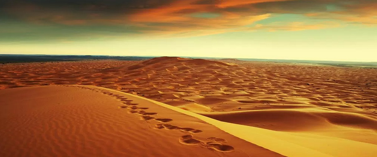 8 Days Casablanca Desert Tour