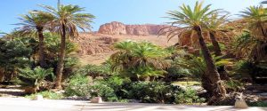 13 Days Tour Casablanca Sahara Desert