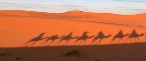 3 Days Tour Marrakech Fes