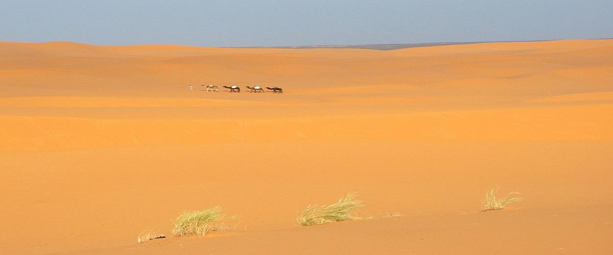 6 Days Tour Marrakech Sahara Desert